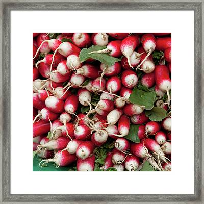 Radish Stack Framed Print by Art Block Collections