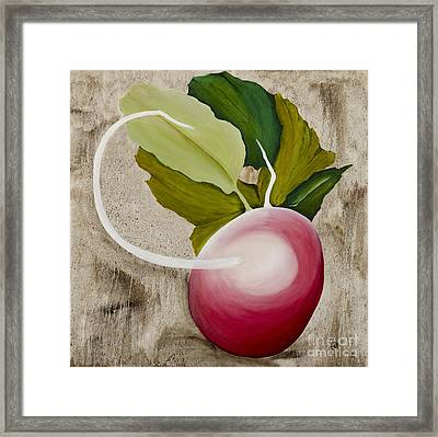 Framed Print featuring the painting Radish by Stuart Engel