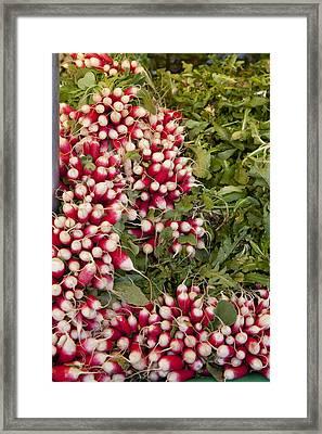 Radishes Framed Print by Art Ferrier