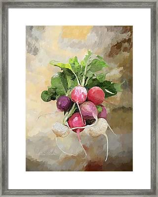 Radishes Framed Print by Enzie Shahmiri