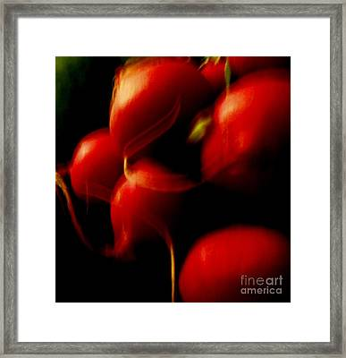 Radishes Ignited Framed Print by Sharon Costa