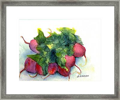 Framed Print featuring the painting Radishes by Sandy Linden