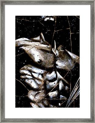 Rafael - Study No. 1 Framed Print