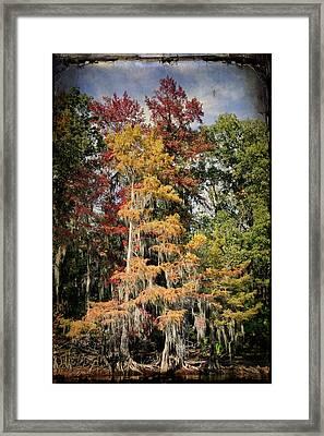 Raggedy Bayou Framed Print