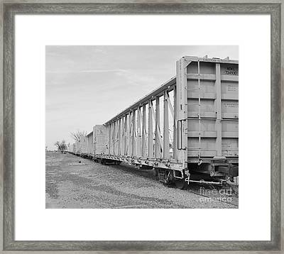 Rail Cars Framed Print