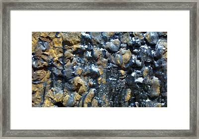 Rail Road Tar Framed Print by Polly Anna