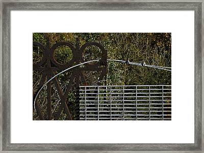 Railing Framed Print by Murray Bloom
