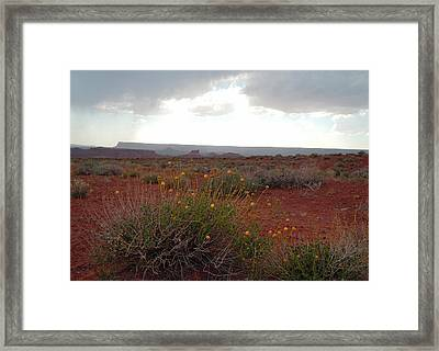 Rain At Monument Valley Framed Print by Heather Coen