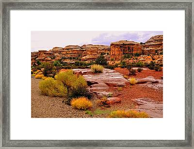 Rain At The Needles District 2 Framed Print by Marty Koch