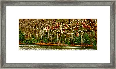 Rain At The Pumpie Framed Print