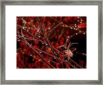 Rain Dance Framed Print by Rona Black