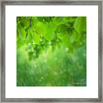 Rain Falls Framed Print