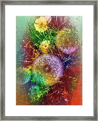 Framed Print featuring the pyrography Rain Flowers by Nico Bielow