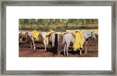 Rain Gear Framed Print