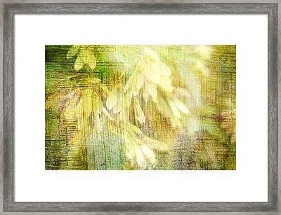 Rain On Leaves Framed Print by Suzanne Powers