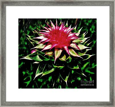 Rain Framed Print by Scott Allison
