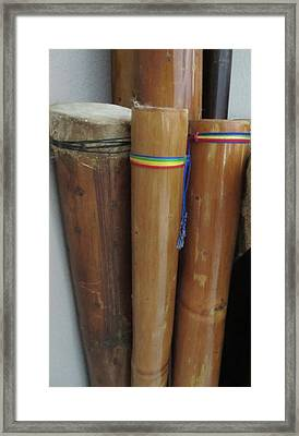 Rain Sticks Framed Print