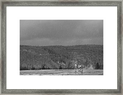 Rain Walk - Yellowstone Framed Print by Steve Ohlsen