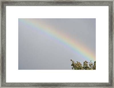 Framed Print featuring the photograph Rainbow After The Rain by Barbara Griffin