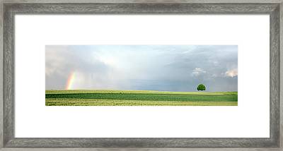 Rainbow And Storm Clouds Over A Field Framed Print by Panoramic Images