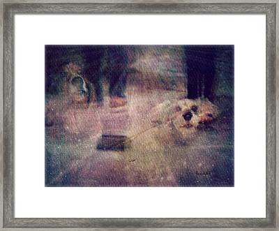 Rainbow Bridge Crossing Framed Print