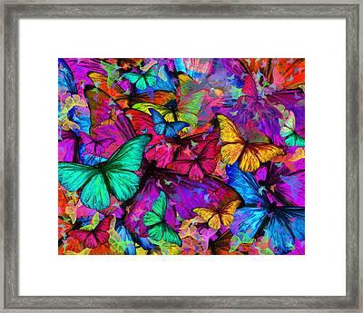 Rainbow Butterfly Explosion Framed Print by Alixandra Mullins