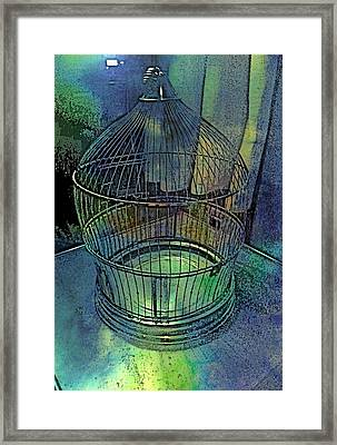 Rainbow Caged Framed Print by ARTography by Pamela Smale Williams