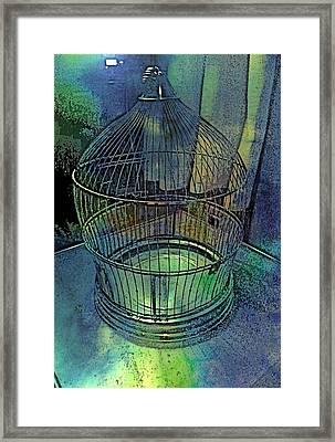 Rainbow Caged Framed Print