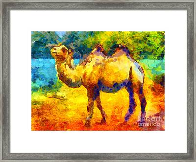 Rainbow Camel Framed Print by Pixel Chimp