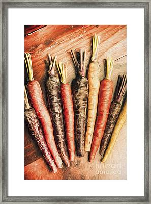 Rainbow Carrots. Vintage Cooking Illustration  Framed Print