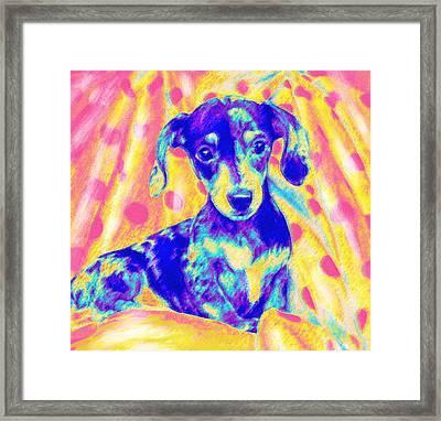 Rainbow Dachshund Framed Print by Jane Schnetlage
