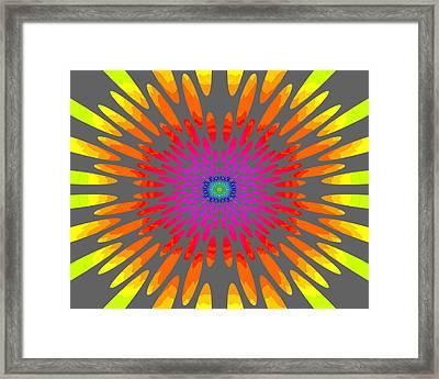 Rainbow Daisy Mandala  C2014  Framed Print by Paul Ashby