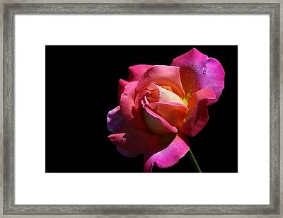 Framed Print featuring the photograph Rainbow by Doug Norkum