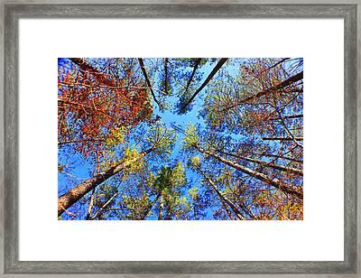 Rainbow Fall Framed Print