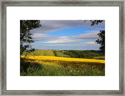 Rainbow Fields Framed Print by Theresa Selley
