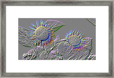Rainbow Flower Framed Print