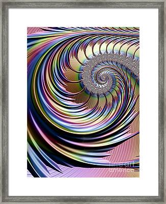 Rainbow Fronds Framed Print by John Edwards