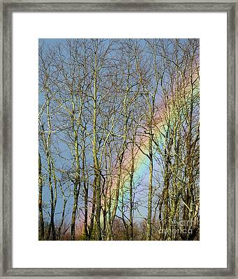 Framed Print featuring the photograph Rainbow Hiding Behind The Trees by Kristen Fox