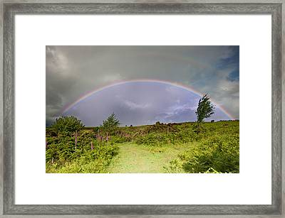 Rainbow In Stromy Sky Above Landscape Of Foxgloves Framed Print by Matthew Gibson