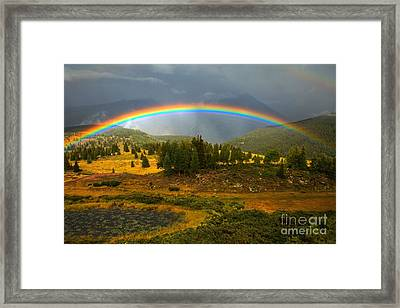 Rainbow In The Forest Framed Print by Adam Jewell