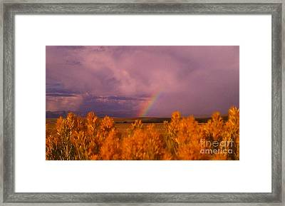 Framed Print featuring the photograph Rainbow In The Plains by Chris Tarpening