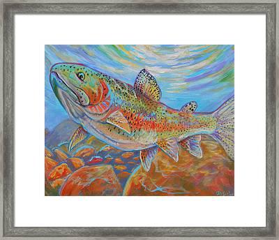 Rainbow  Framed Print by Jenn Cunningham