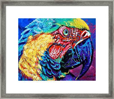 Rainbow Macaw Framed Print
