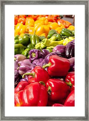 Rainbow Of Peppers Framed Print by Teri Virbickis