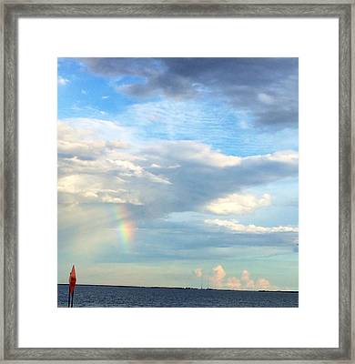 Rainbow On Laughing Dolphin With Seahorses Framed Print
