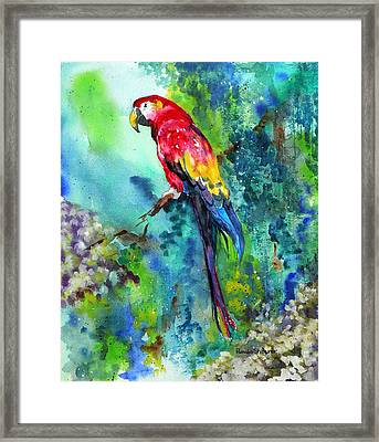 Rainbow On The Fly Framed Print