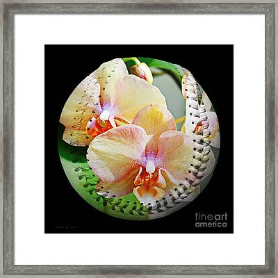 Rainbow Orchids Baseball Square Framed Print by Andee Design