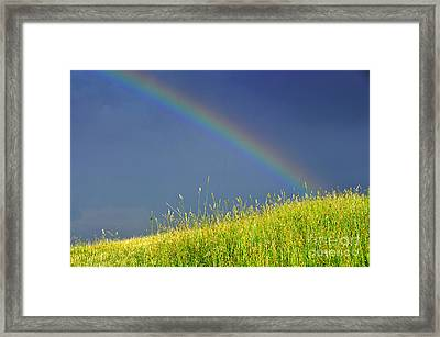 Rainbow Over Pasture Field Framed Print by Thomas R Fletcher
