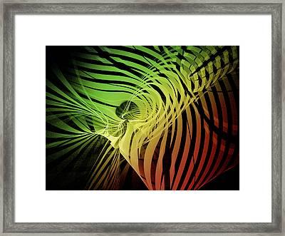 Rainbow Ribs Framed Print