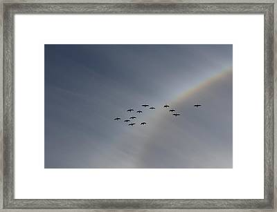 Framed Print featuring the photograph Rainbow Squadron by Brian Boyle